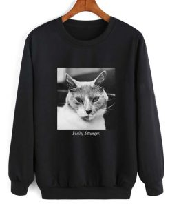 Hello Stranger Cat Sweatshirt Quotes Sweater