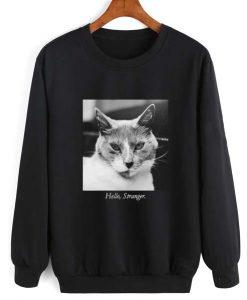 Hello Stranger Cat Sweatshirt Quotes Sweater
