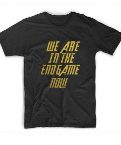 We Are In The Endgame Now T-shirt