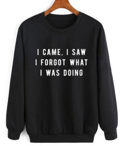I Came I Saw I Forgot Sweater