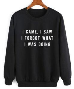 I Came I Saw I Forgot Sweater